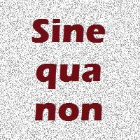 Sinequanon