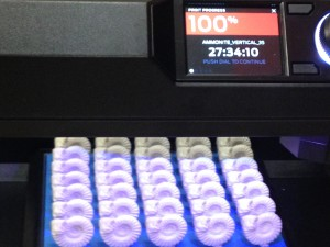 Job complete: 35 printed ammonites