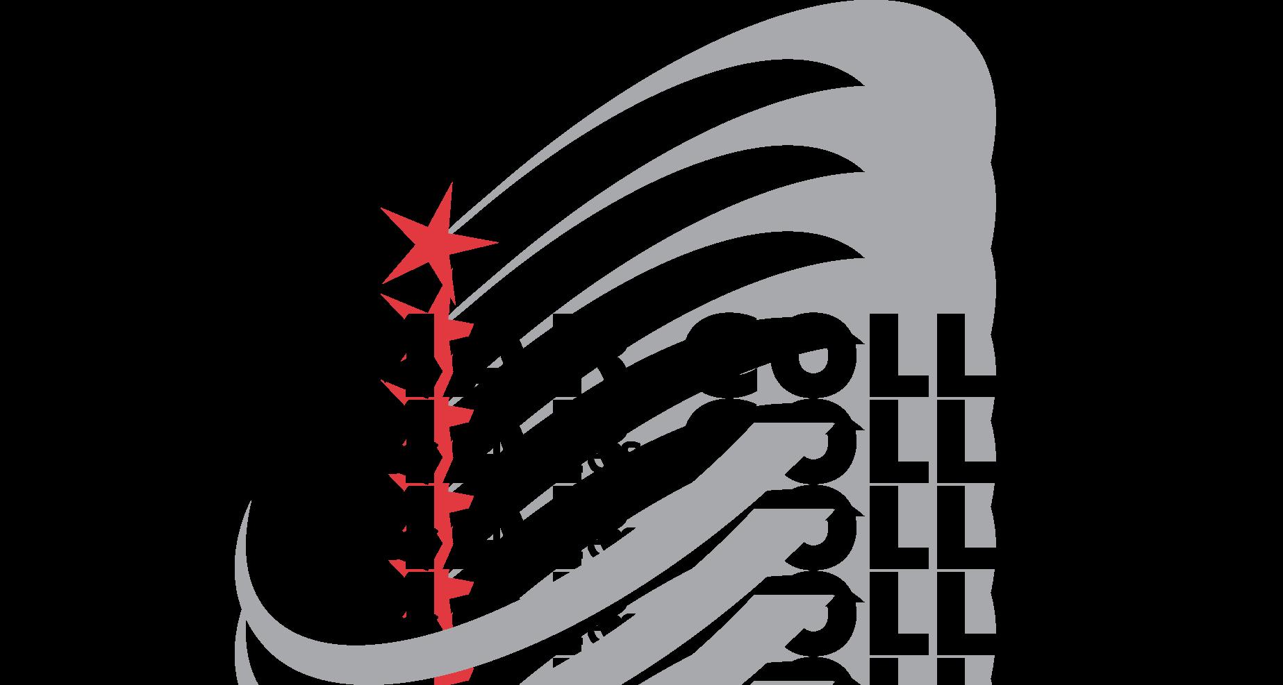 Image result for palomar logo