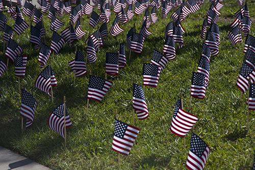 Veterans Day Celebration to Honor Palomar College Veterans