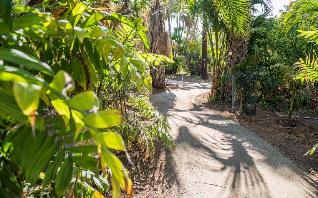 Arboretum Set to Reopen with Sept. 26 Dedication Ceremony