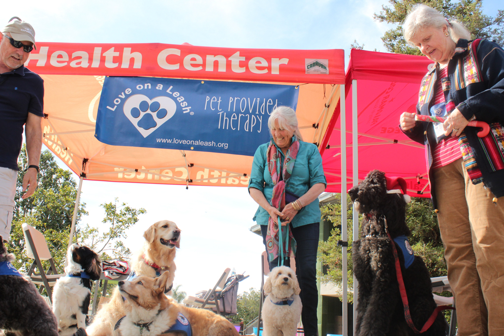 The dogs of Love on a Leash show off bearing at the Love on a Leash event on Palomar College. Allen Burton / The Telescope