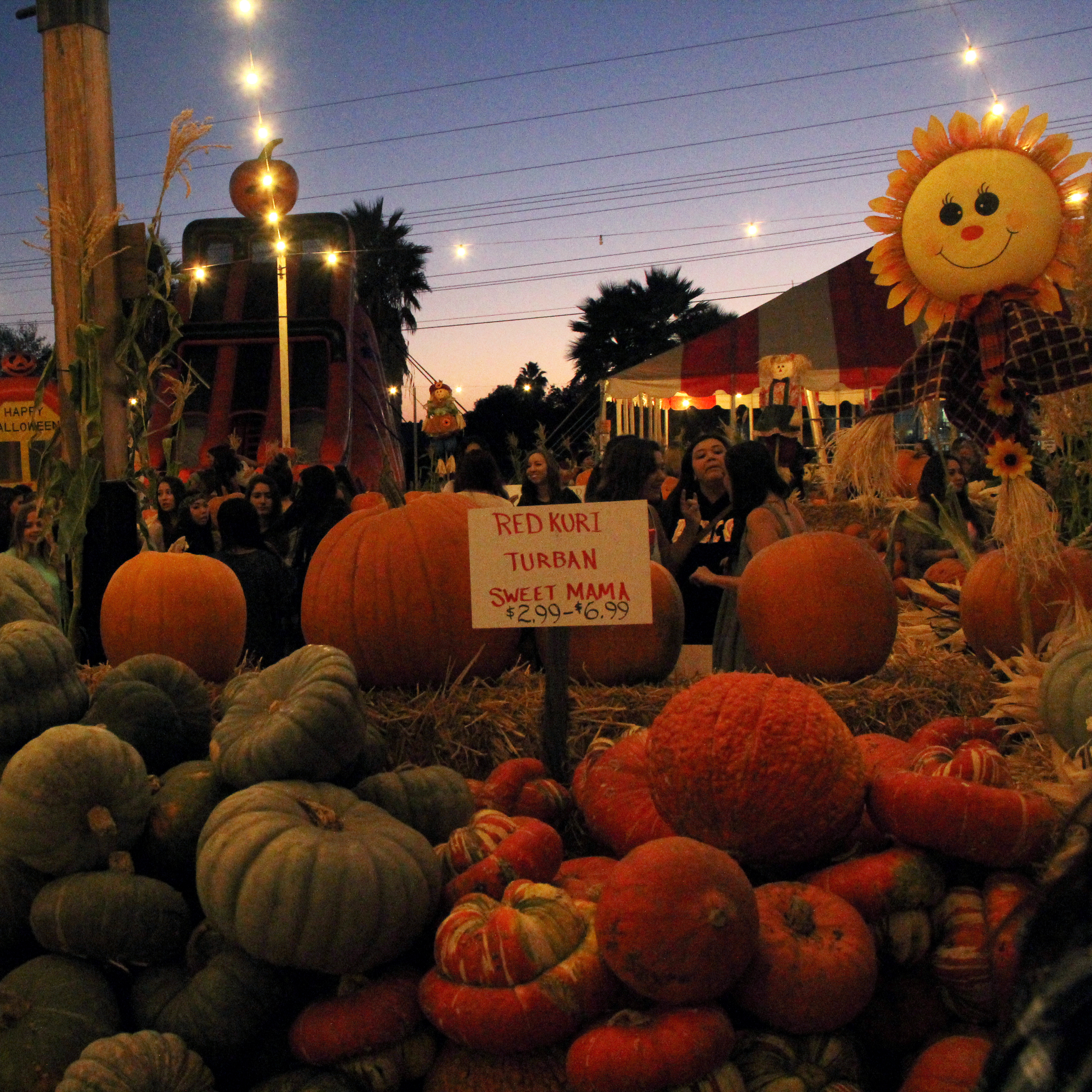Stu Miller's pumpkin patch is crowded in San Marcos with people ready to purchase items for this years Halloween festivities. -Meredith James