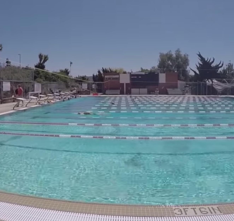 Video: Swim season wrap up