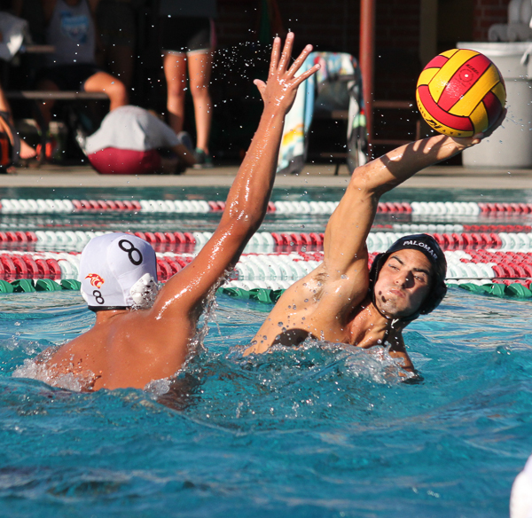 Palomar's Mitch Lerma gets ready to throw the ball over Jose Ibanez during the men's water polo game at the Wallace Memorial Pool on Oct. 14. Palomar defeated Southwestern 21 to 11. Lou Roubitchek / The Telescope