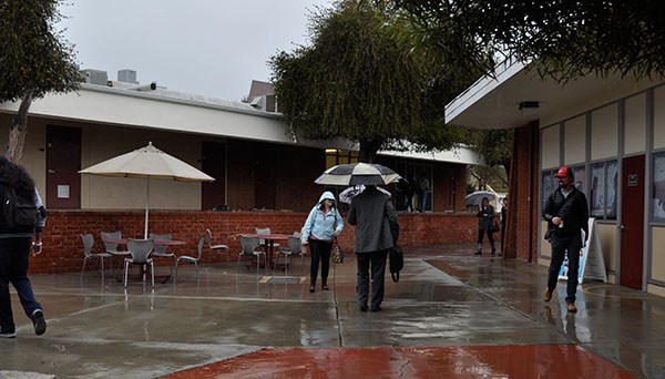 The umbrellas come out as Palomar students transit between classes during a rainy Monday afternoon on Feb 6. 2017 . Johnny Jones/The Telescope