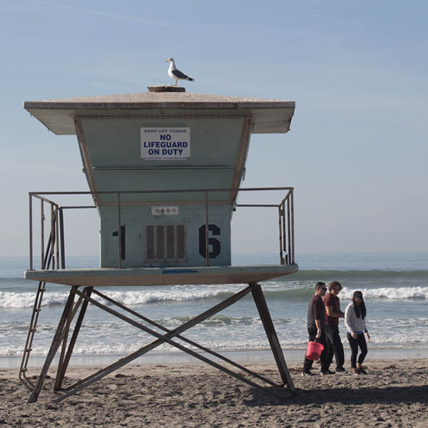 Project Nurture team on the beach. Angel Arenas/The Telescope