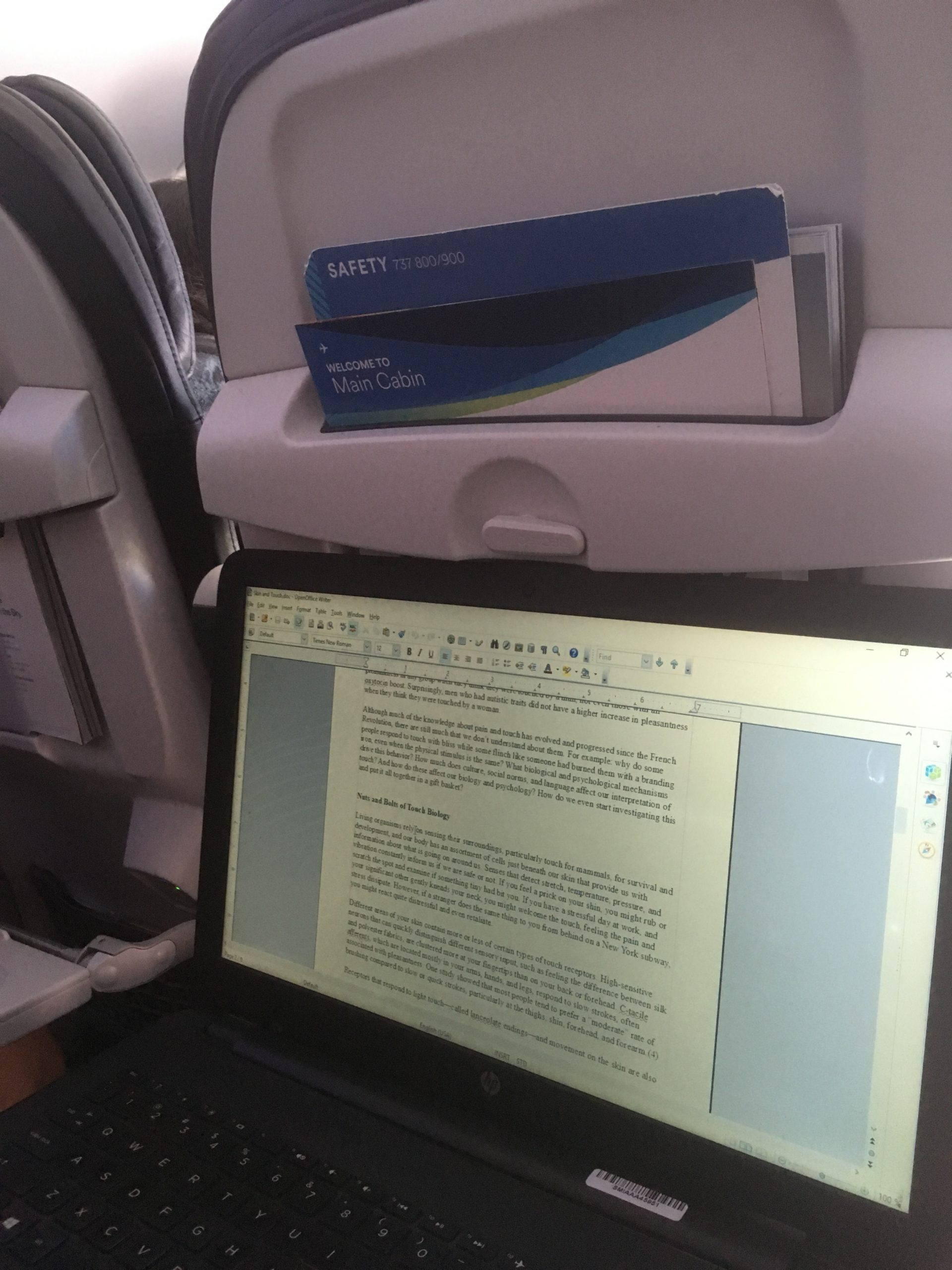 remote work airplane travel