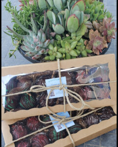 Packaged truffles ready to be delivered to customers. Photo credit: Matthew Wang