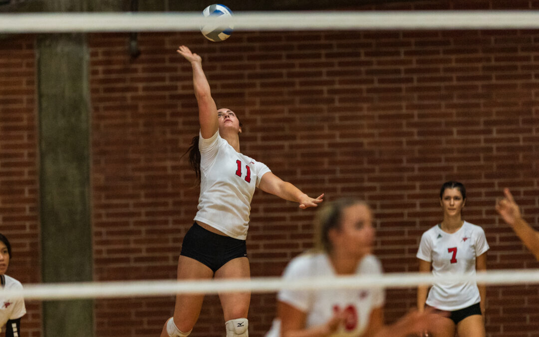 Freshman Volleyball Player on the Rise